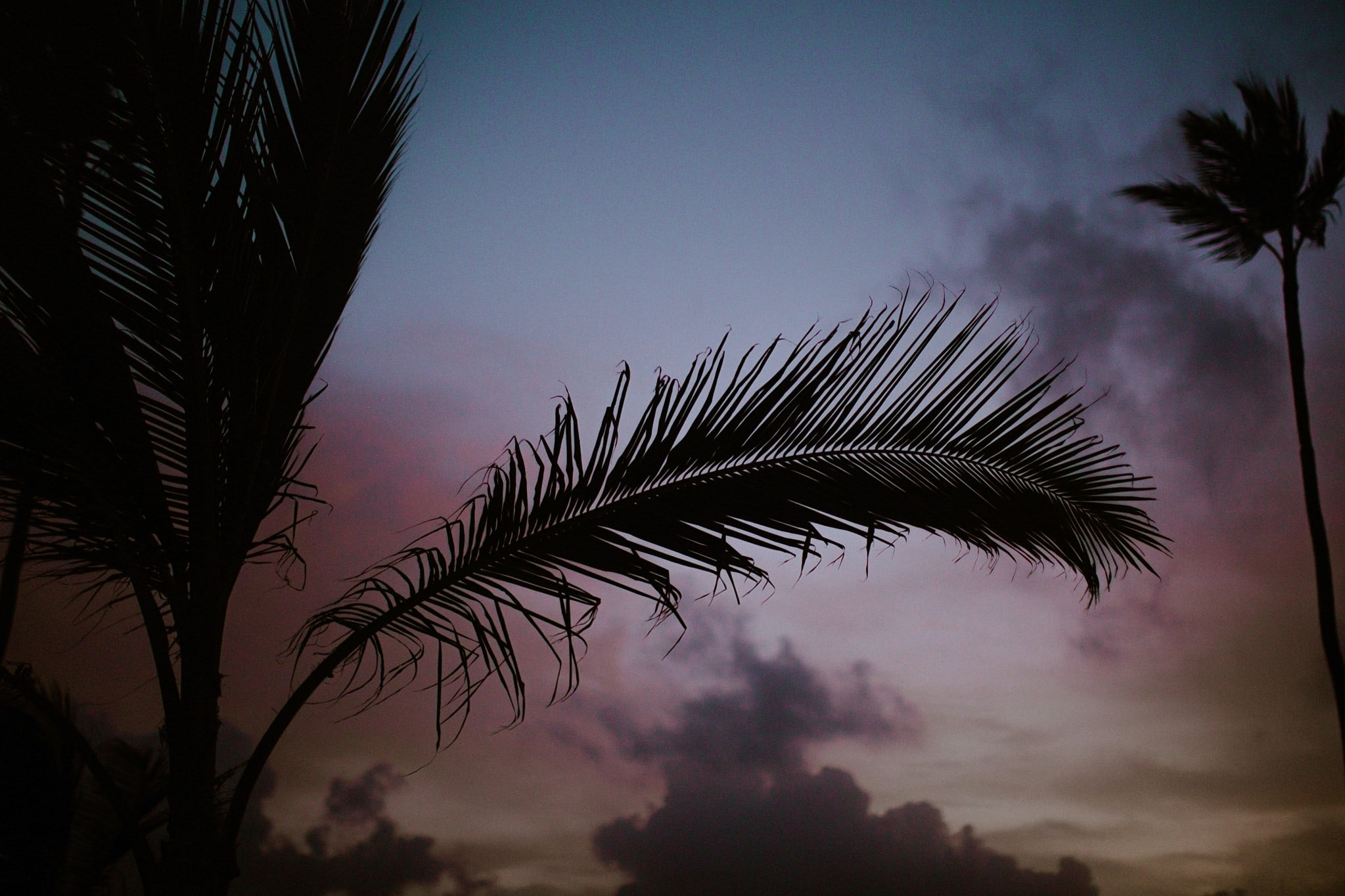 Punta Cana Sunrise Session